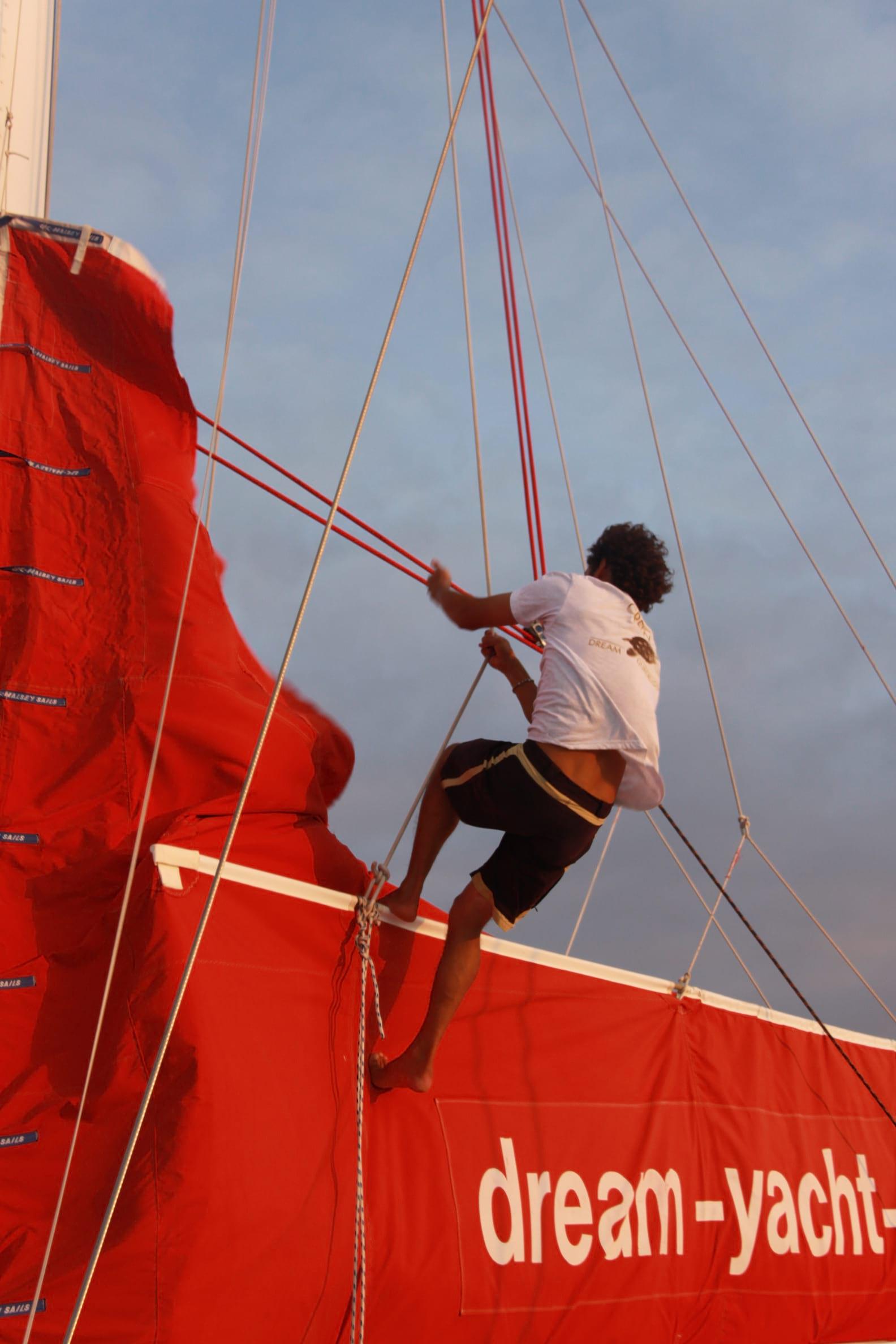 curriculum vitae skipper professionnel